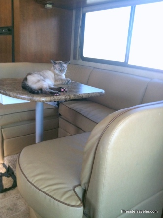 Jack on RV table
