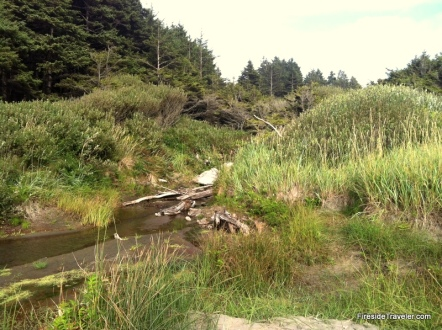 Ocean shores creek
