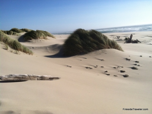 Florence dunes